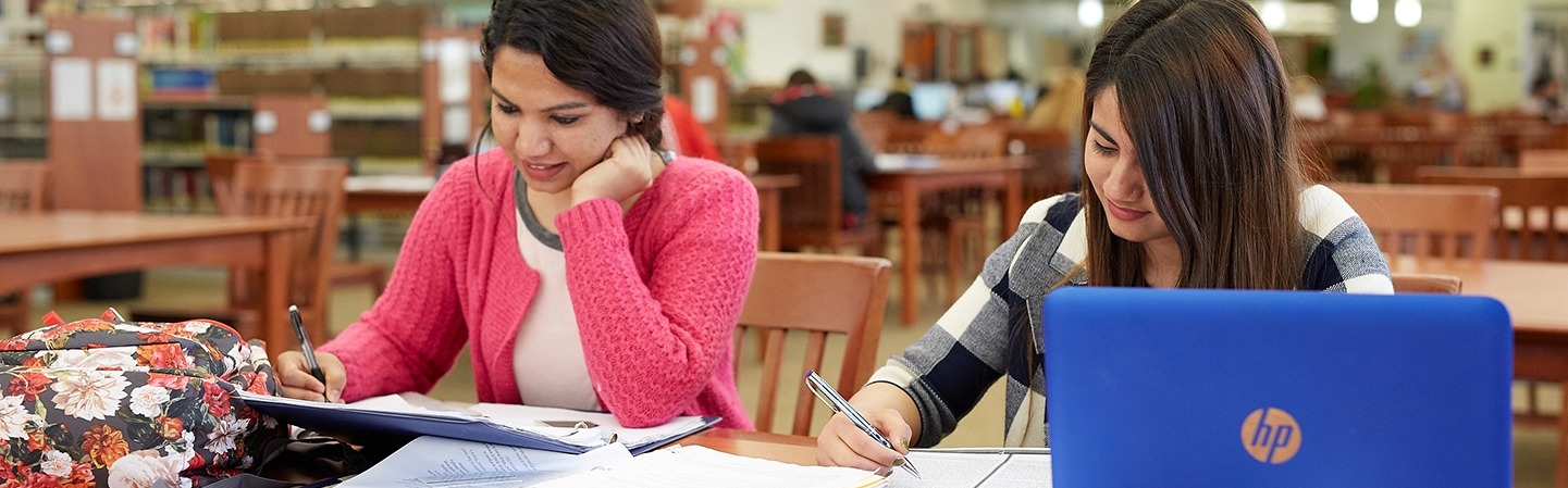 2 students studying in library